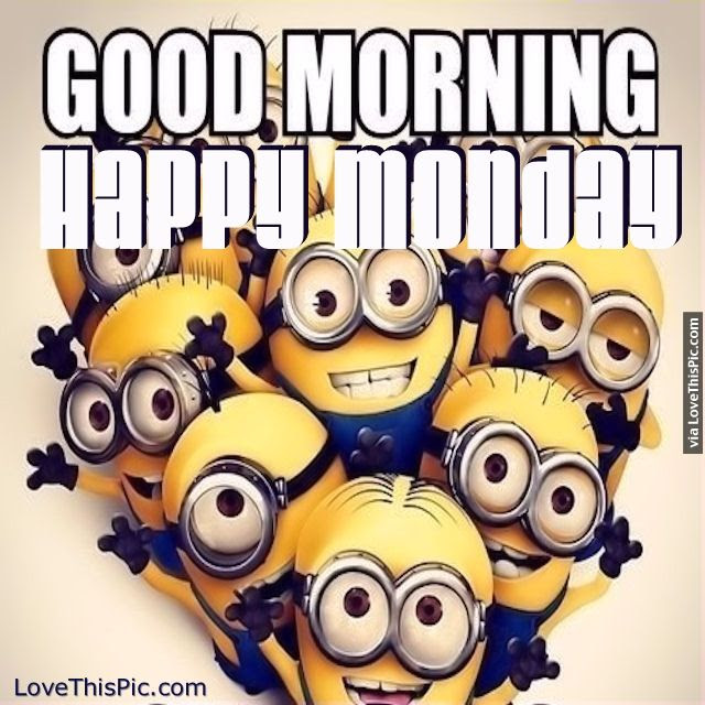 Good Morning Happy Monday Minions Pictures Photos And Images For