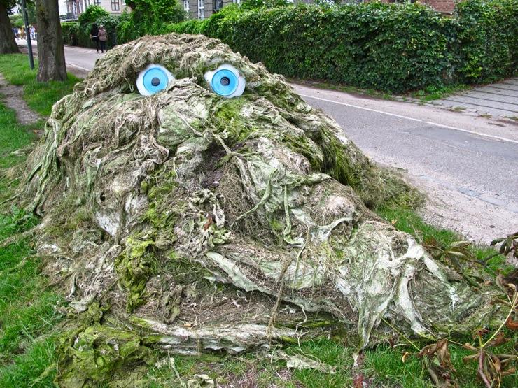 Algae troll