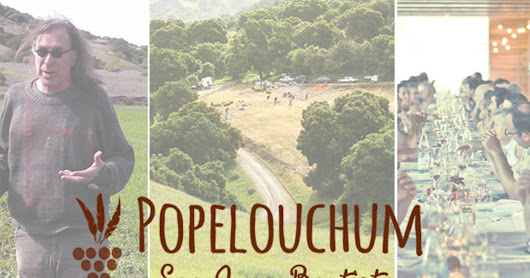 CLICK HERE to support POPELOUCHUM VINEYARD: 10,000 GRAPES FOR A NEW WINE