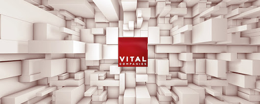 The Vital Wave Newsletter