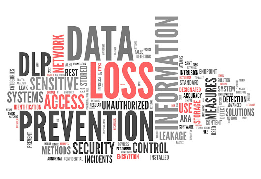 Business Continuity and Distaster Recovery - Capital Network Solutions, Inc.