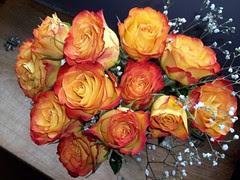ValentineRoses_21711