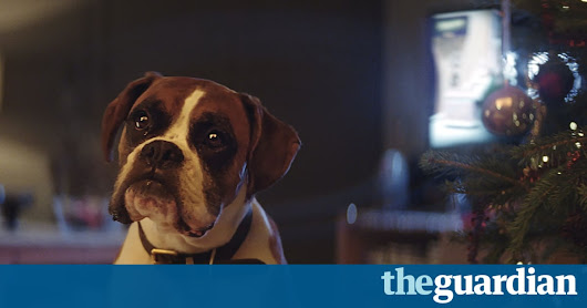 Meet Buster: the John Lewis 2016 Christmas advert – video | Global | The Guardian
