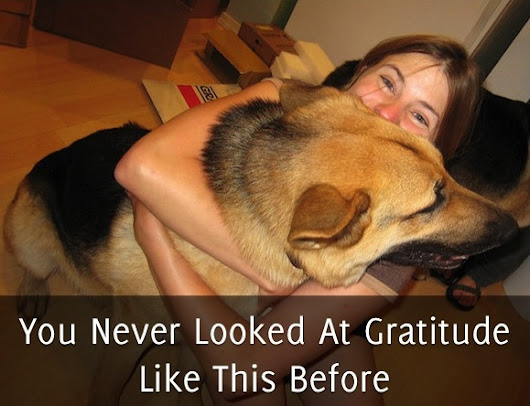 You Never Looked At Gratitude Like This Before - Self Stairway