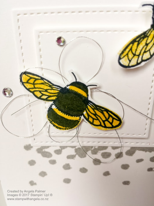 Bee Thank You Note Card From Dragonfly Dreams