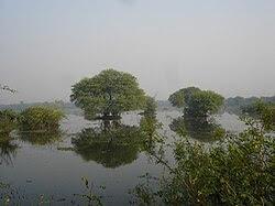 3433- Keoladeo Nature Reserve.jpg