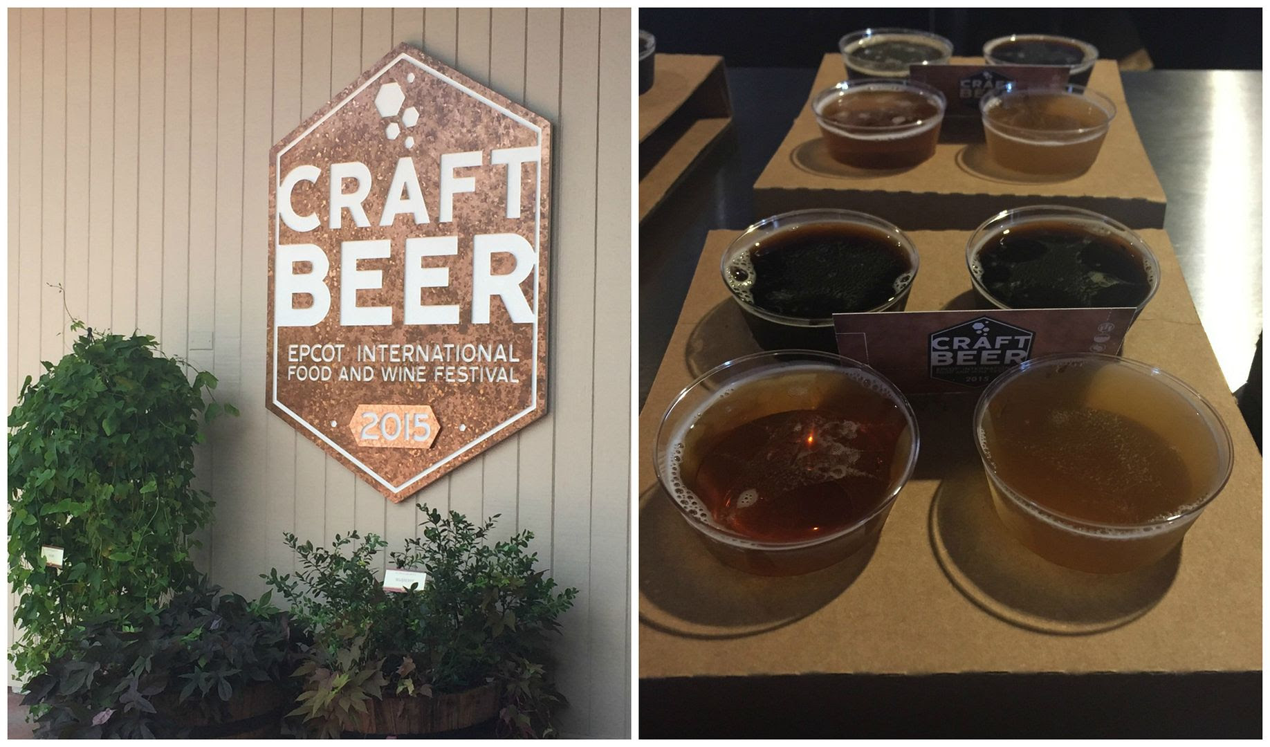 Craft Beer Epcot Food and Wine