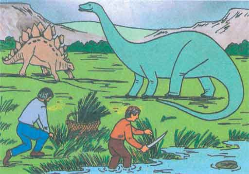 Image result for schools' curriculum downplays slavery, says humans and dinosaurs lived together