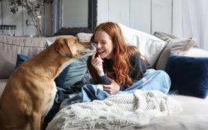 7 Ways Pet Parents Can Help Control Their Dog Allergies