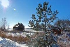 crib barn in winter