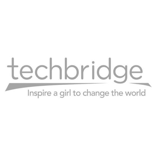 Engineer the Revolution: Top Ten Strategies to Diversify Technology | Techbridge Girls