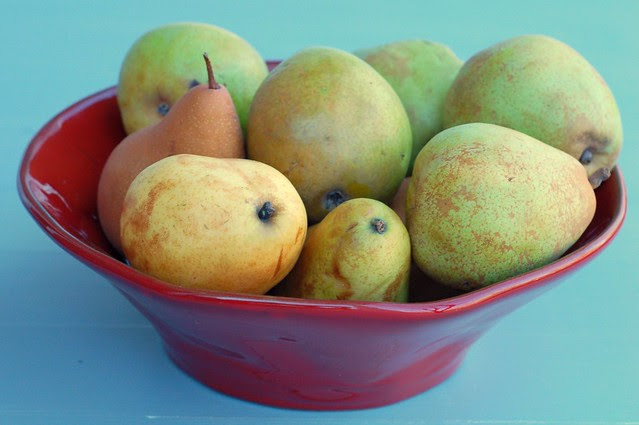 Bowl of pears by Eve Fox, Garden of Eating blog, copyright 2011