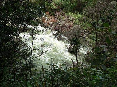 rivière Chiapas.jpg