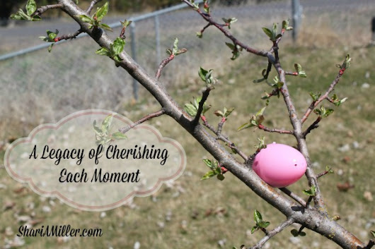A Legacy of Cherishing Each Moment - Shari A. Miller