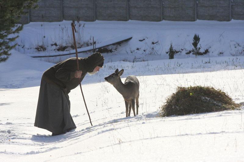 http://www.orthphoto.net/photo/201212/75850.jpg