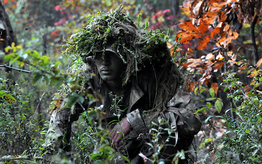 Camouflage and Concealment: The Art of Staying Hidden - The Prepper Journal