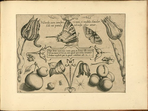 Archetypa studiaque patris - Joris Hoefnagel (1592) k