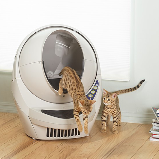 Win a Litter-Robot - April