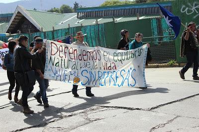 Marcha Puelo en Valdivia 12
