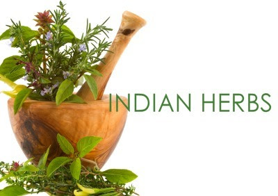 Find Ayurvedic Products Manufacturers & Suppliers in India | Ayurvedic and Herbal Products