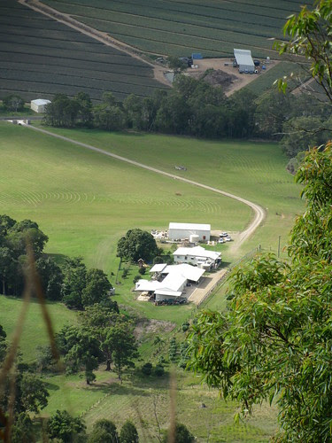 Looking down on the farm