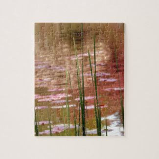 Water Through Reeds Puzzles
