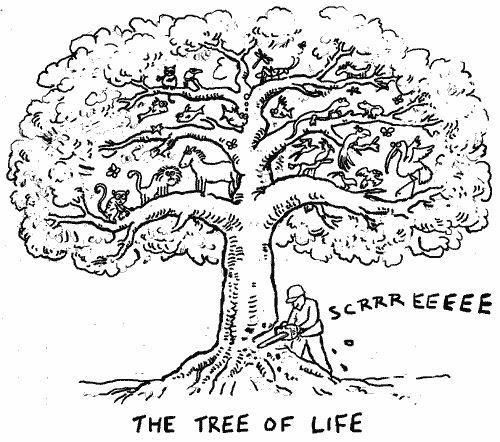 Incoherencia 9 Cortar El árbol De La Vida
