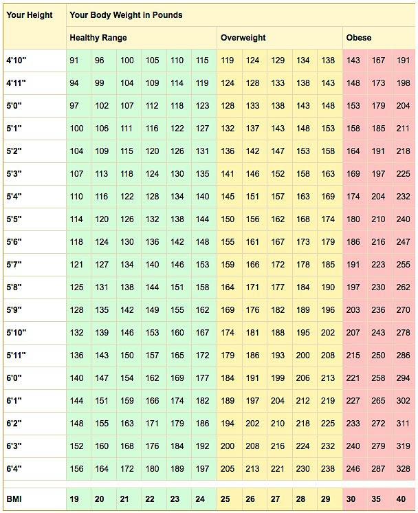 us army body fat percentage formula