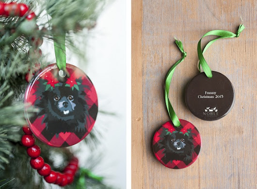 Gift Idea: Noble Friends + Discount Code - Daily Dog Tag