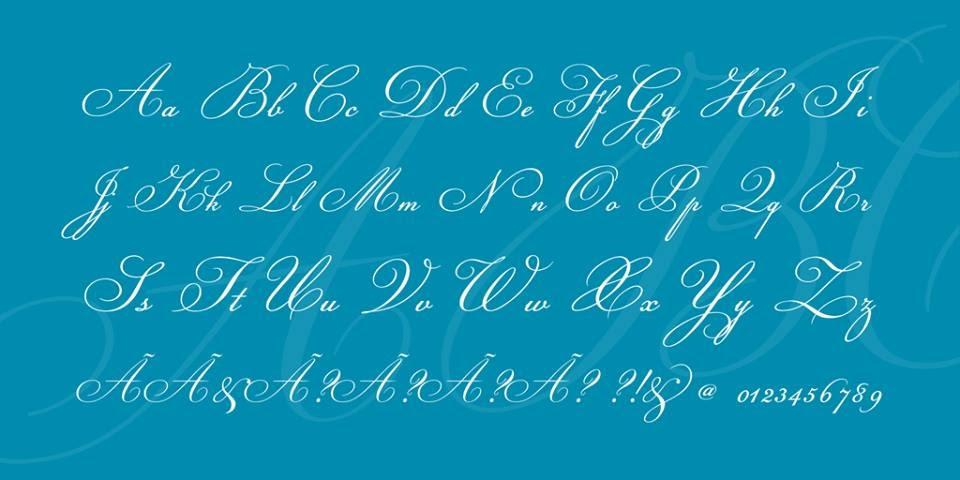 Champignon Font Family