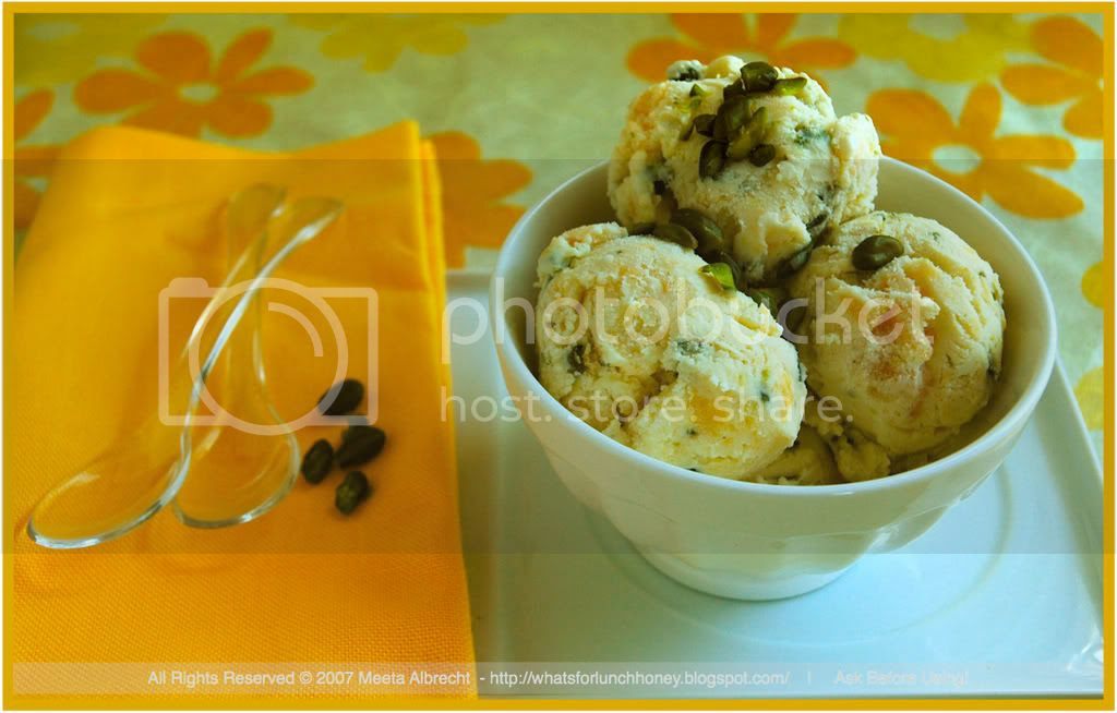 Apricot Pistachio Ice Cream 03