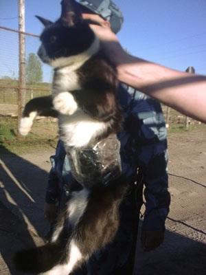Foto do suspeito divulgada pelas autoridades penitenciárias russas (Foto: AP)