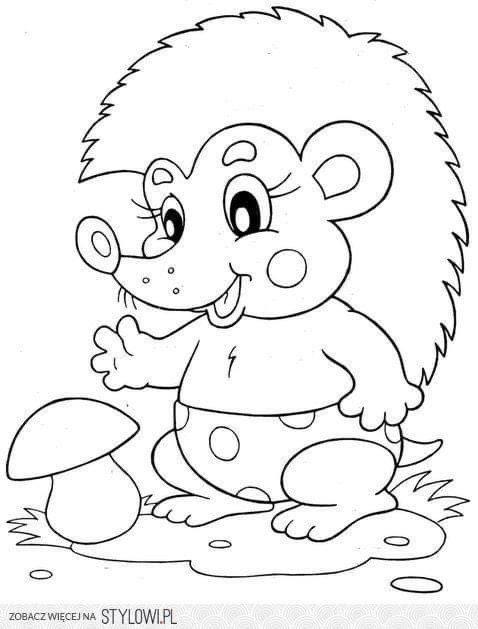 igel malvorlage kinder  coloring ideas for kids