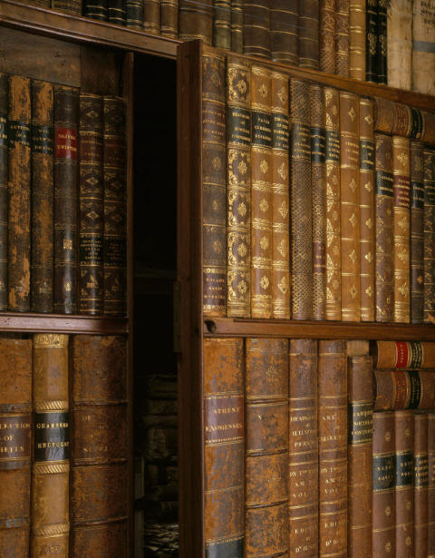 library-at-killerton-devon.jpg (480×615)
