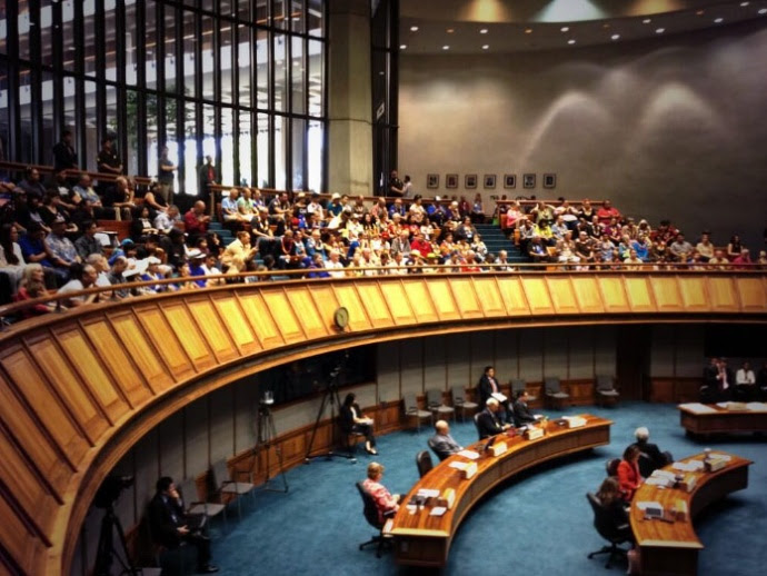 Final reading of same-sex marriage bill in the State Senate. Photo courtesy Mileka Lincoln.