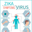 Zika Virus Facts You Need to Know