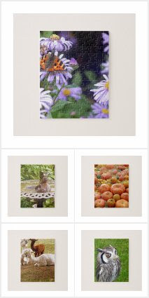 Jigsaw Puzzles Of Nature