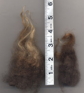 Samples of Henna's fleece.