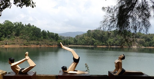 Kerala Blog Express Day #2 : Berkunjung ke Elephant Rehabilitation Centre dan Sivananda Yoga