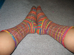 Big Gay Socks modeled