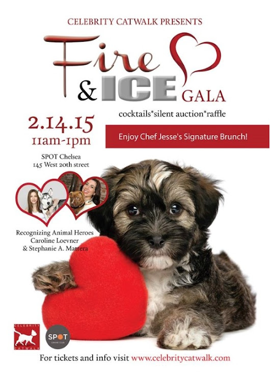 AmpliVox Supports Celebrity Catwalk's Valentine's Day Fundraiser for Animal Welfare