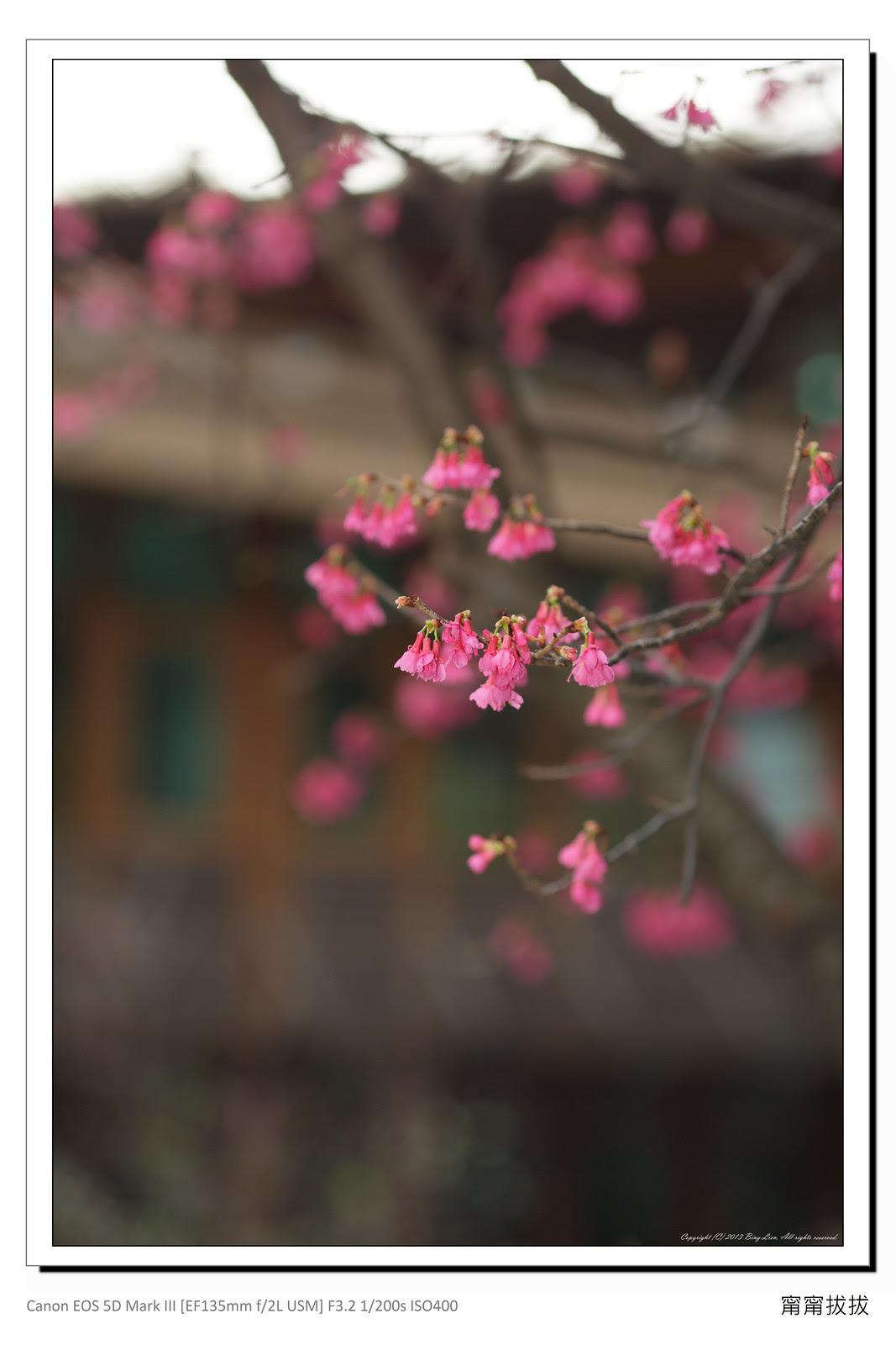 frame_BING5739