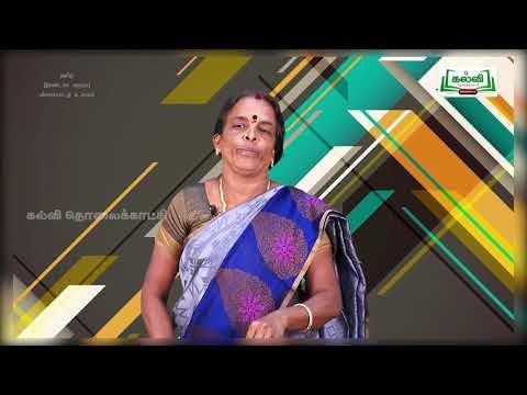 2nd Tamil விளையாட்டு உலகம் பருவம் 1 இயல் 1 Kalvi TV