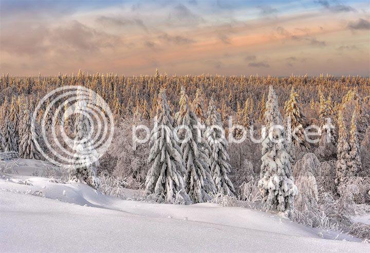 photo Vladimir-Chuprikov-3_zpsn6w3y5nt.jpg