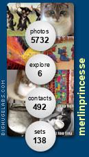 merlinprincesse. Get yours at bighugelabs.com/flickr