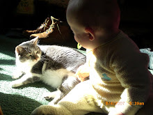 """Cats are a wonderful way to teach """"gentle"""""""