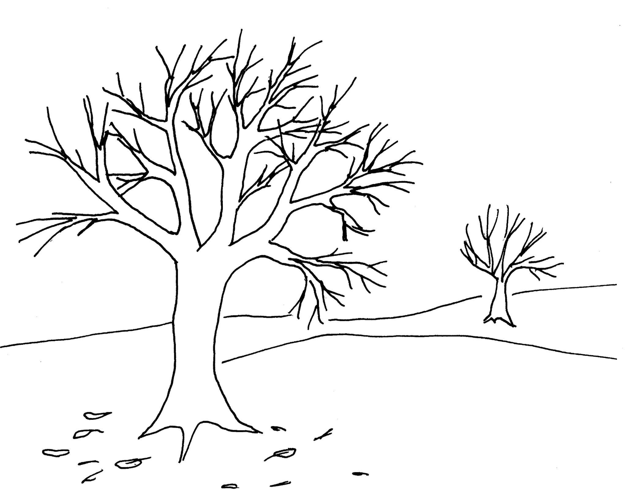coloriage la bible moise et aaron  colorier Dessin d arbre a imprimer