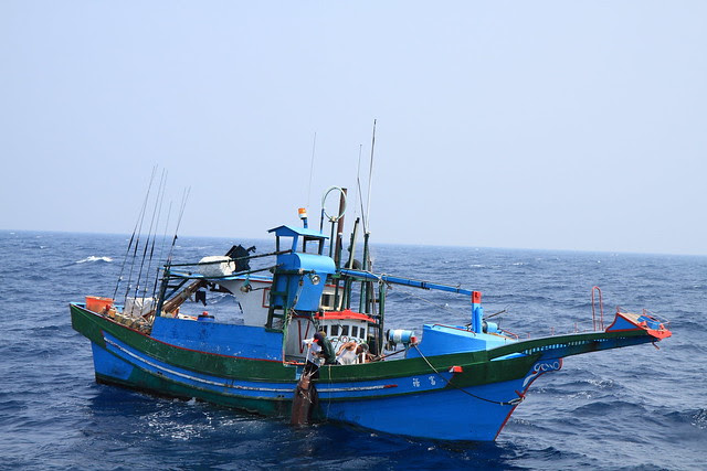 鮪.旗魚標識放流 FRI Eastern Marine Biology Research Center Fields Notes: 20100804鏢魚傘旗魚