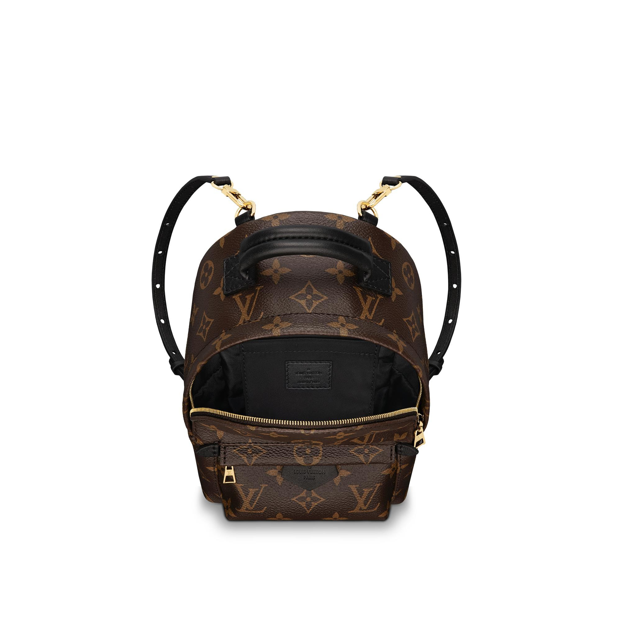 Image result for lv palm springs backpack mini