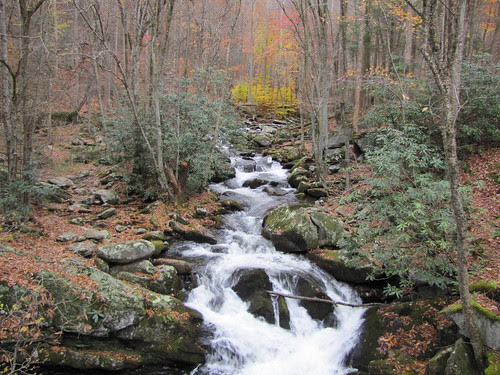 IMG_6609_River_on_Middle_Prong_Trail